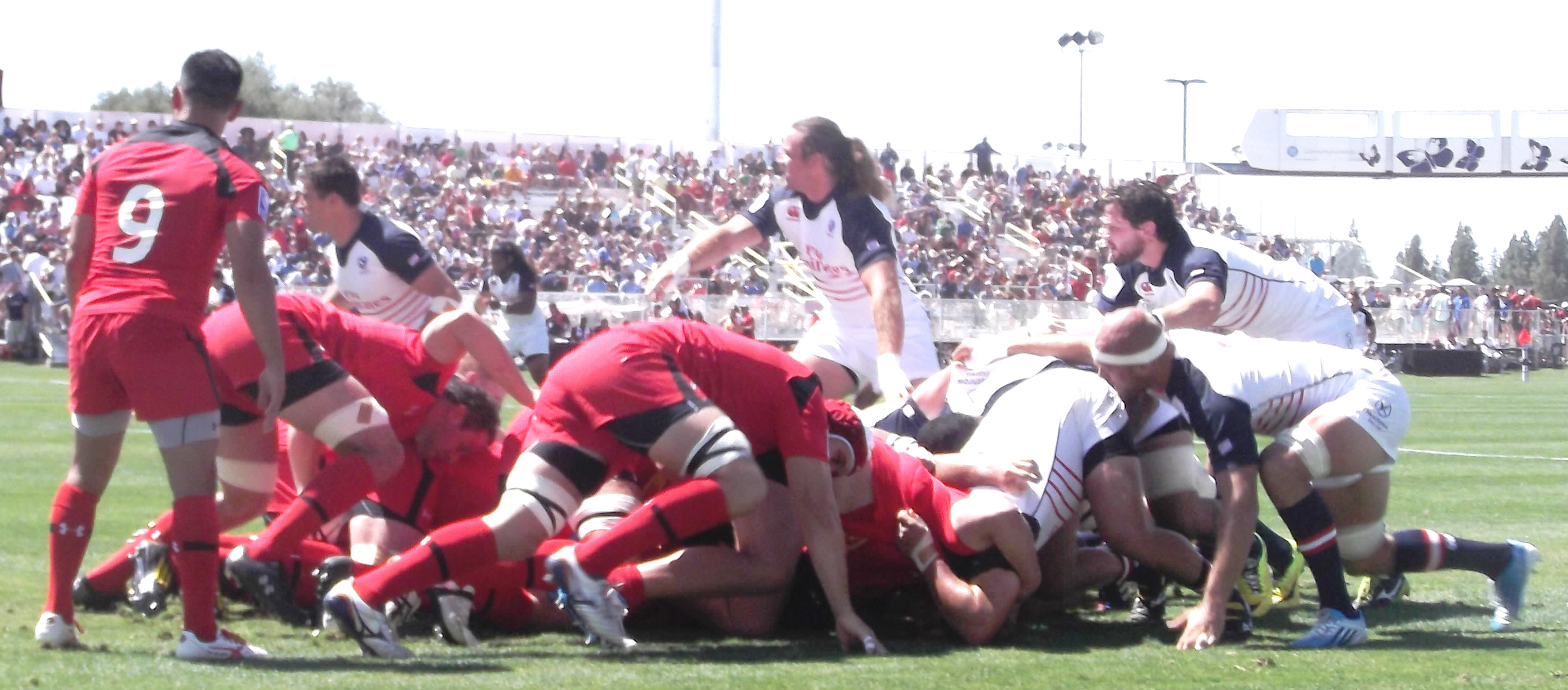 scrum-collapse-y-1